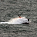 Lifeboat Spirit of Guernsey in rough sea's south of Guernsey 11-01-15 Pic by Tony Rive (16).jpg
