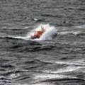 Lifeboat Spirit of Guernsey in rough sea's south of Guernsey 11-01-15 Pic by Tony Rive (18).jpg