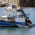 Pic by Tony Rive 17-09-15 Two Guernsey Harbour Marina Staff member's manouvre their Dories to berth the local Fishing boat Defiance alongside the East side of the Fish Quay in St Peter Port after it had been towed home by the Lifeboat Spirit of Guernsey.